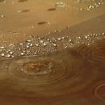 Rain/Desert Island (detail)